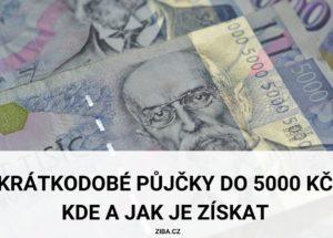 Krátkodobé půjčky do 5000 Kč (Kde a jak je získat)